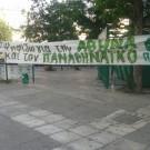 panki_01