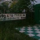 panki_09