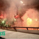 PANATHINAIKOS-gayros_cup08