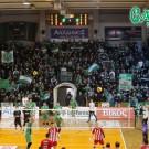 PAO-gavros_volley_02