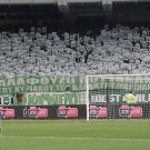 pao-mpaok-cup_01