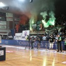 champion_basket04